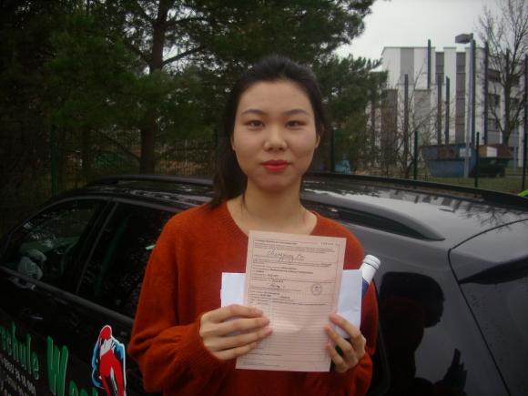 Jin Chengyin 28.3.19